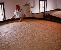 fermentation-process